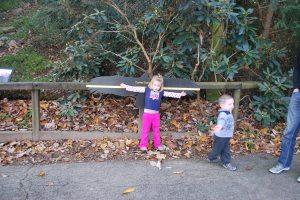 Morgan's still much smaller than a turkey vulture.